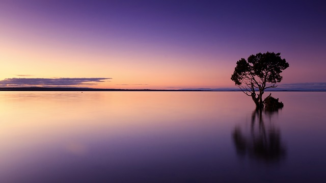 sunset-1373171_640